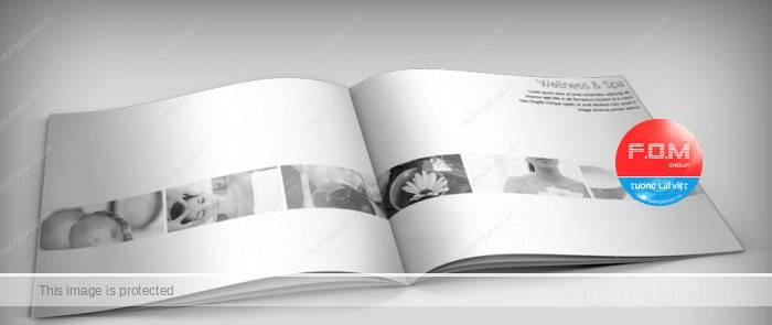 Cách phân biệt Profile – Catalogue – Brochure